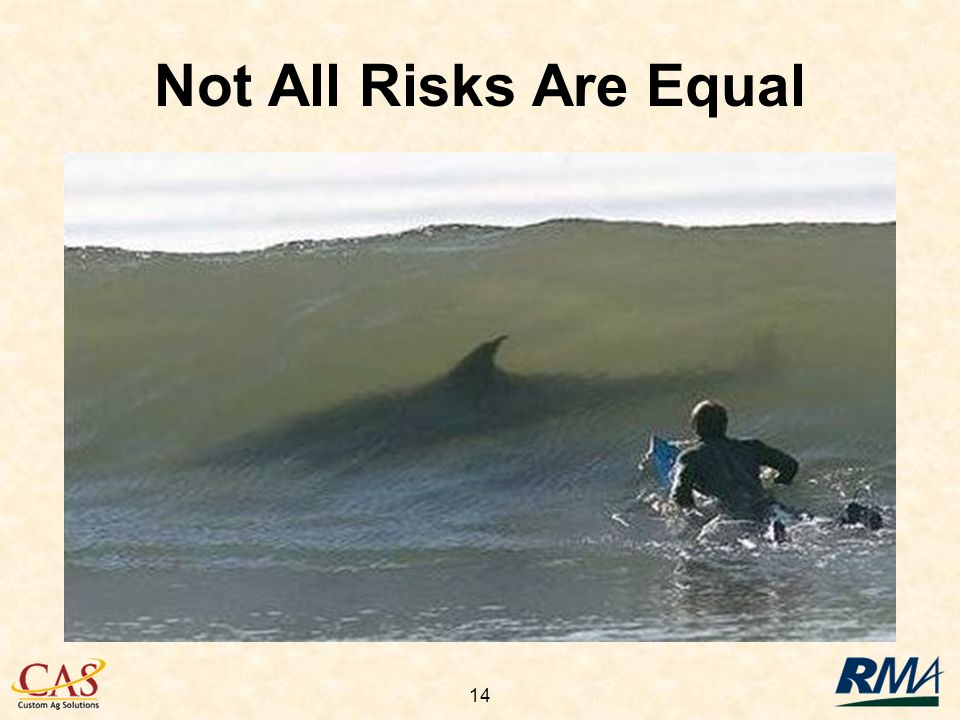 14 Not All Risks Are Equal