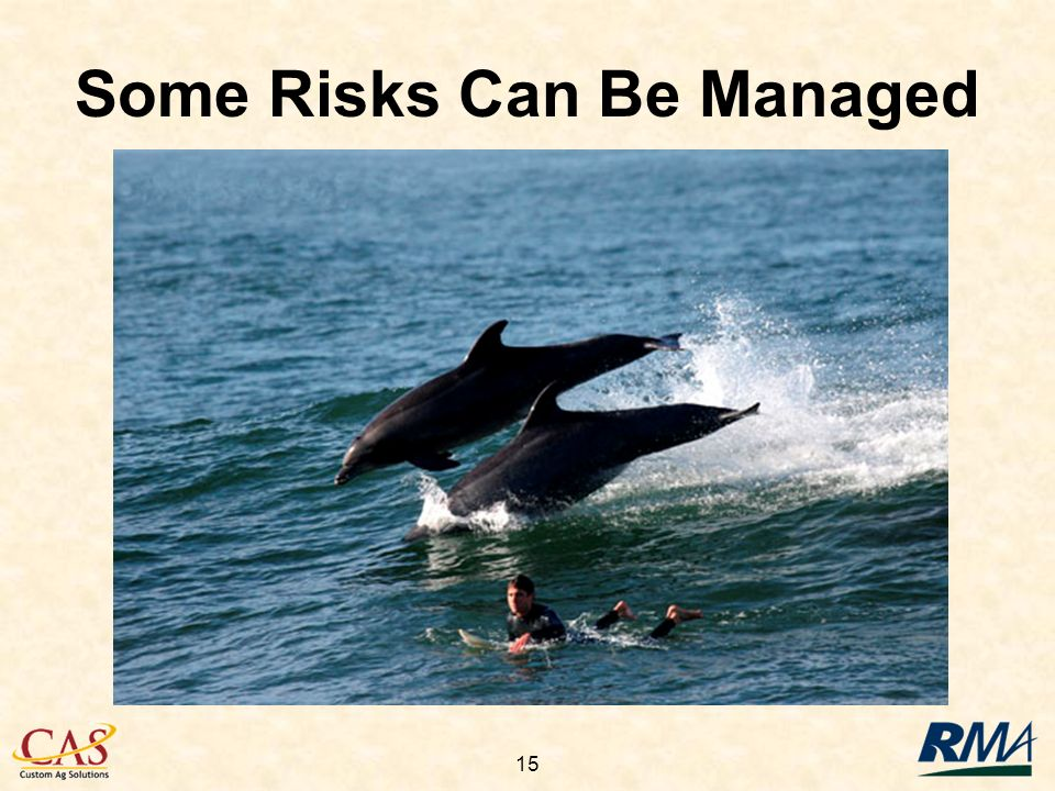 15 Some Risks Can Be Managed