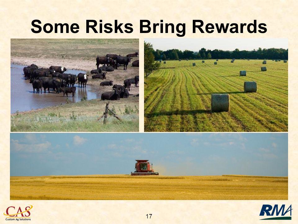 17 Some Risks Bring Rewards