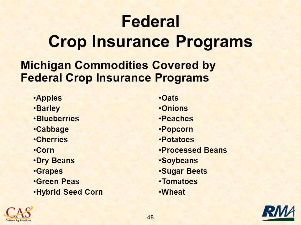 48 Federal Crop Insurance Programs Michigan Commodities Covered by Federal Crop Insurance Programs Apples Barley Blueberries Cabbage Cherries Corn Dry Beans Grapes Green Peas Hybrid Seed Corn Oats Onions Peaches Popcorn Potatoes Processed Beans Soybeans Sugar Beets Tomatoes Wheat