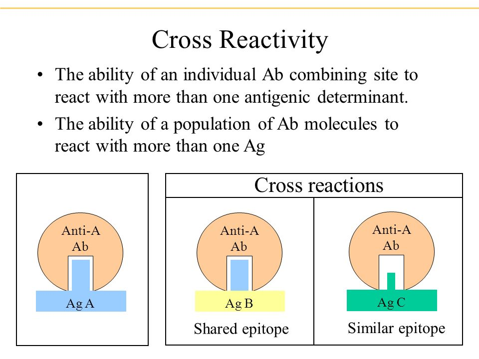 Cross Reactivity The ability of an individual Ab combining site to react with more than one antigenic determinant.