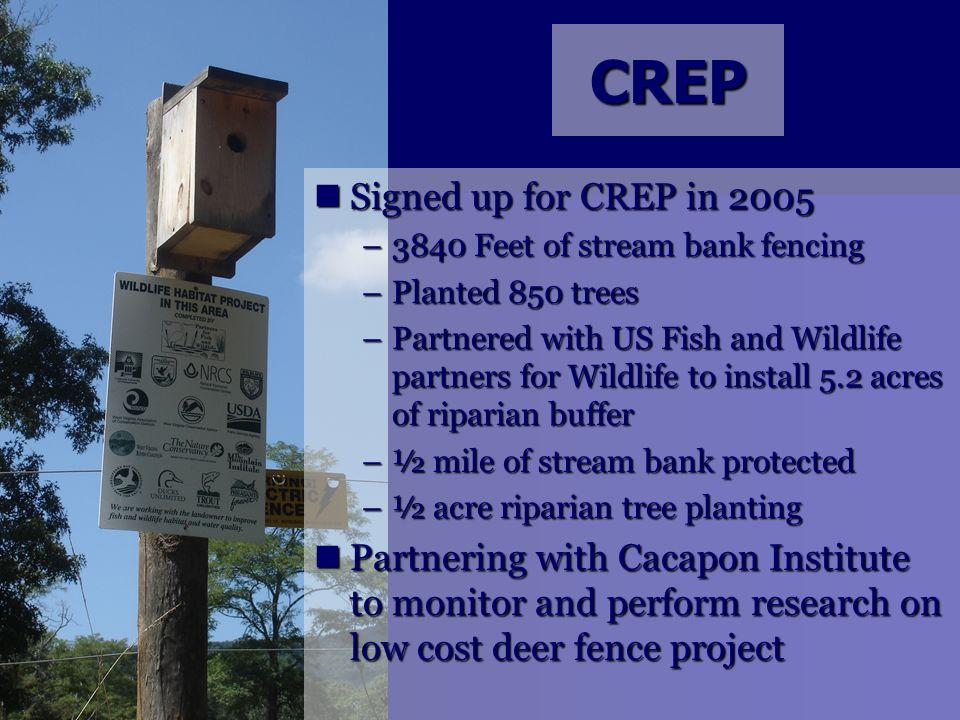 CREP Signed up for CREP in 2005 Signed up for CREP in 2005 –3840 Feet of stream bank fencing –Planted 850 trees –Partnered with US Fish and Wildlife p