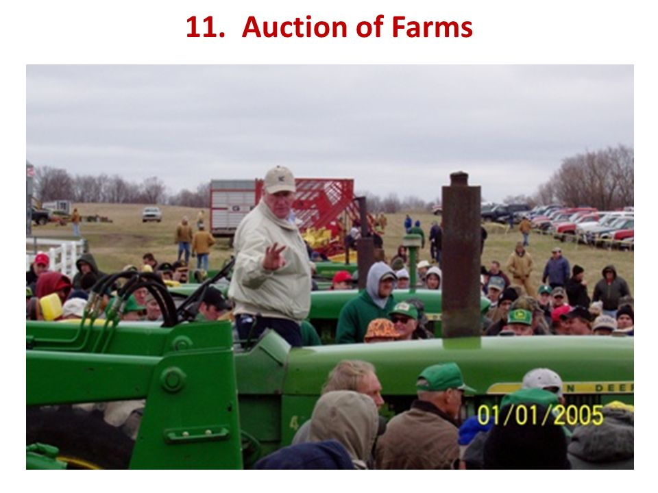 11. Auction of Farms