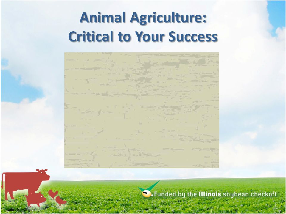 Animal Agriculture: Critical to Your Success