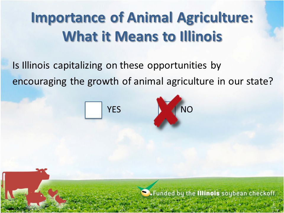 Importance of Animal Agriculture: What it Means to Illinois Is Illinois capitalizing on these opportunities by encouraging the growth of animal agriculture in our state.