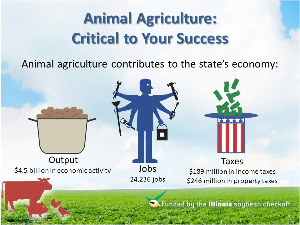 Animal Agriculture: Critical to Your Success Illinois livestock industry output multiplier = 1.88