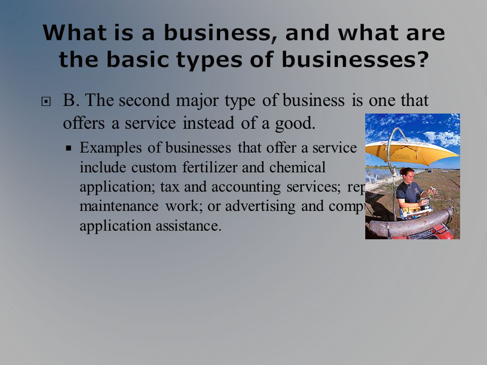 B. The second major type of business is one that offers a service instead of a good. Examples of businesses that offer a service include custom fertil