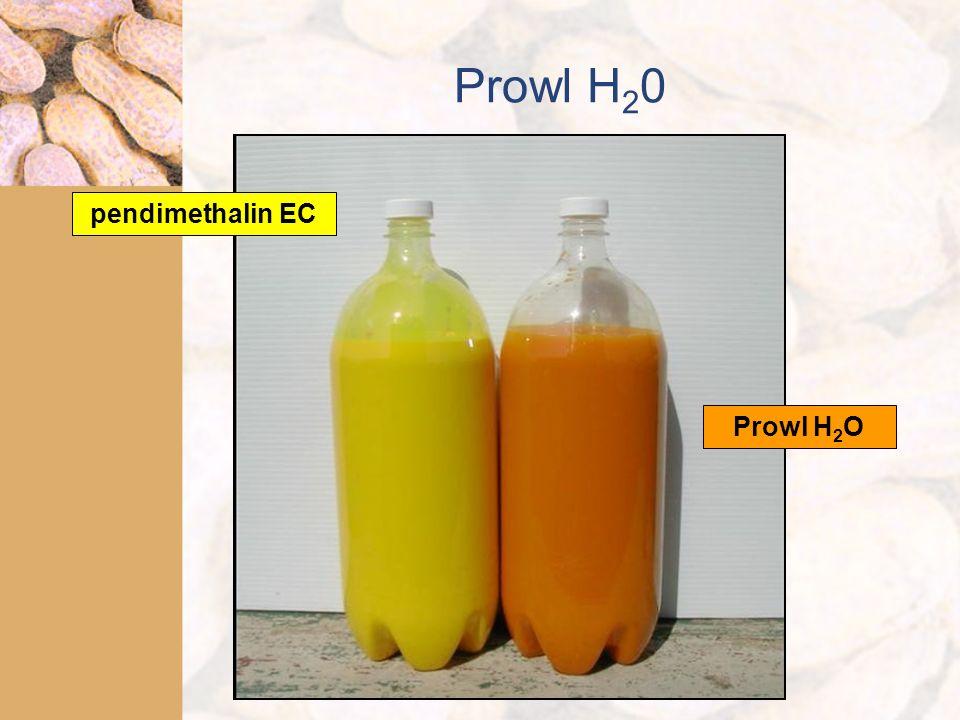 Prowl H 2 0 pendimethalin EC Prowl H 2 O
