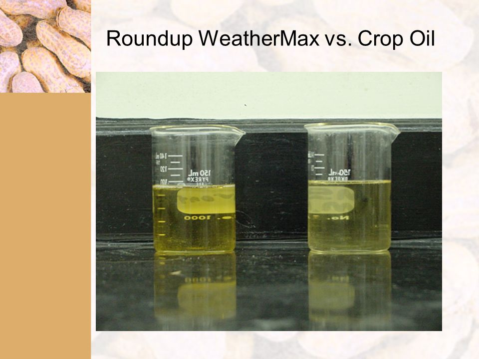 Roundup WeatherMax vs. Crop Oil