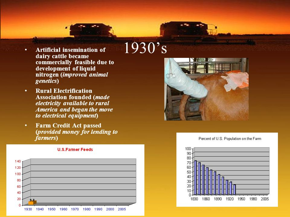 1930s Artificial insemination of dairy cattle became commercially feasible due to development of liquid nitrogen (improved animal genetics) Rural Elec