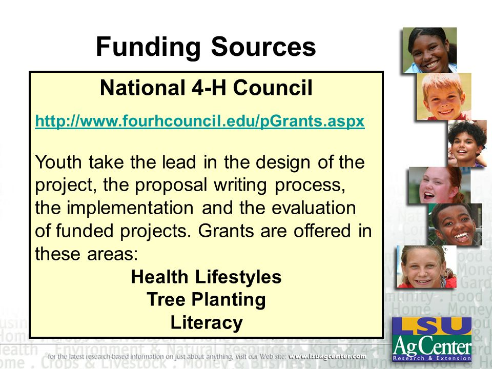 Funding Sources National 4-H Council http://www.fourhcouncil.edu/pGrants.aspx Youth take the lead in the design of the project, the proposal writing p
