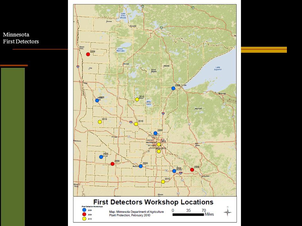Minnesota First Detectors Bronze birch borer