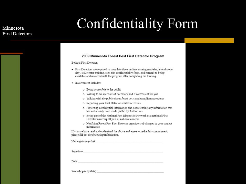 Minnesota First Detectors Confidentiality Form