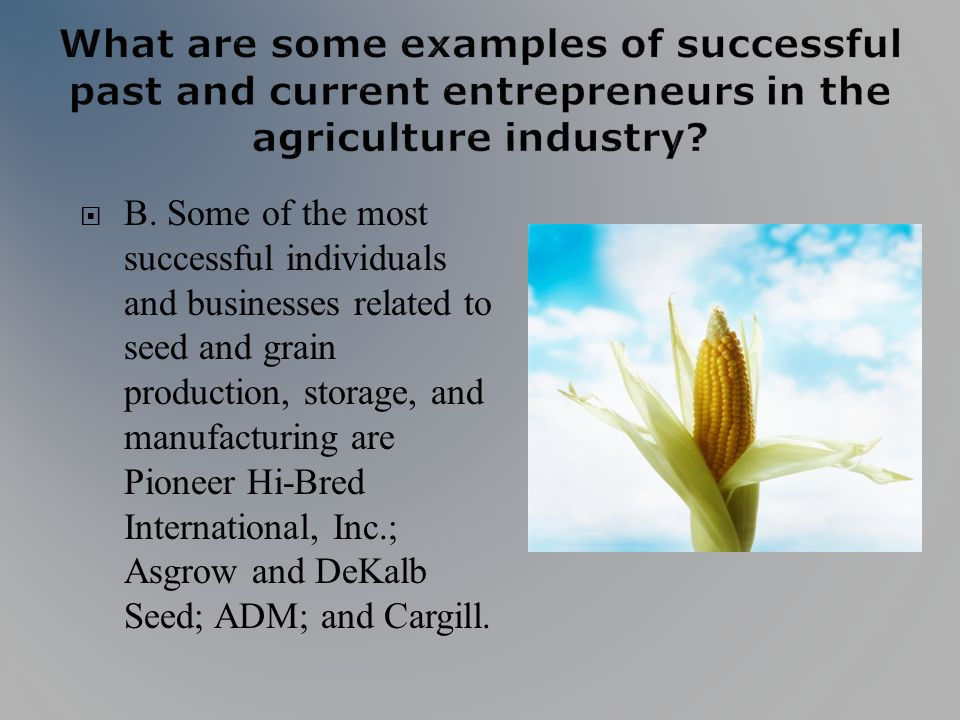 B. Some of the most successful individuals and businesses related to seed and grain production, storage, and manufacturing are Pioneer Hi-Bred Interna