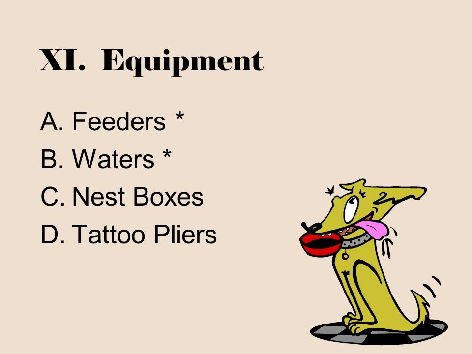 XI. Equipment A.Feeders * B.Waters * C.Nest Boxes D.Tattoo Pliers