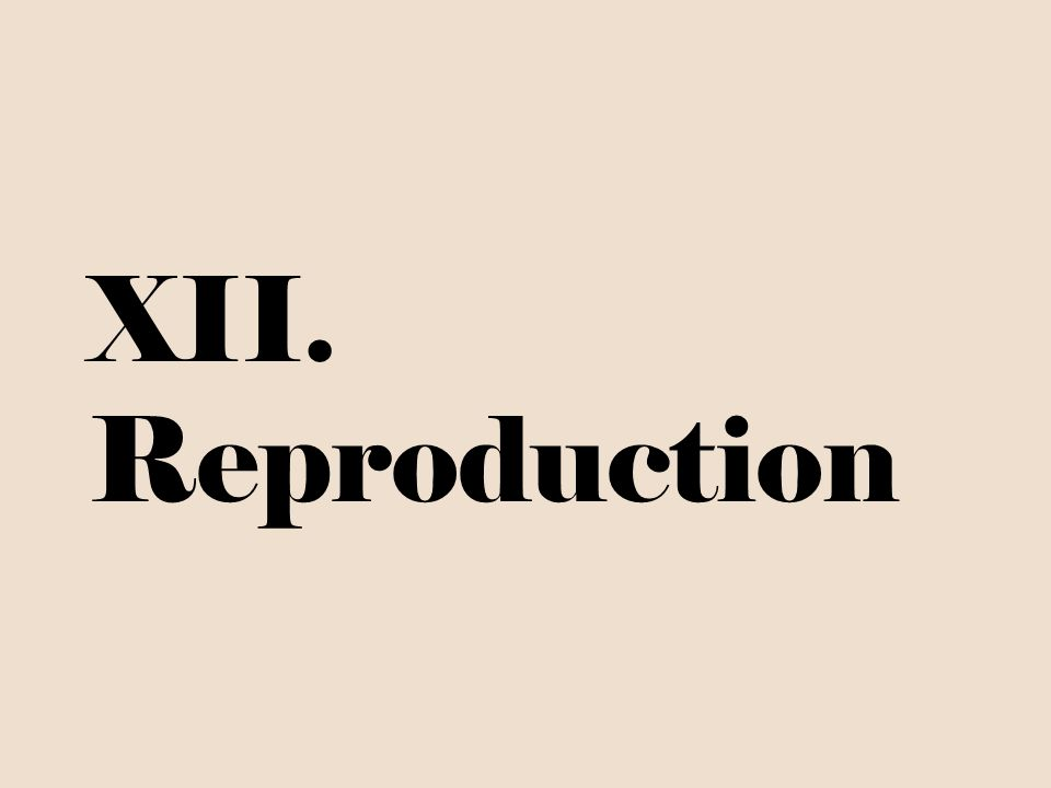 XII. Reproduction