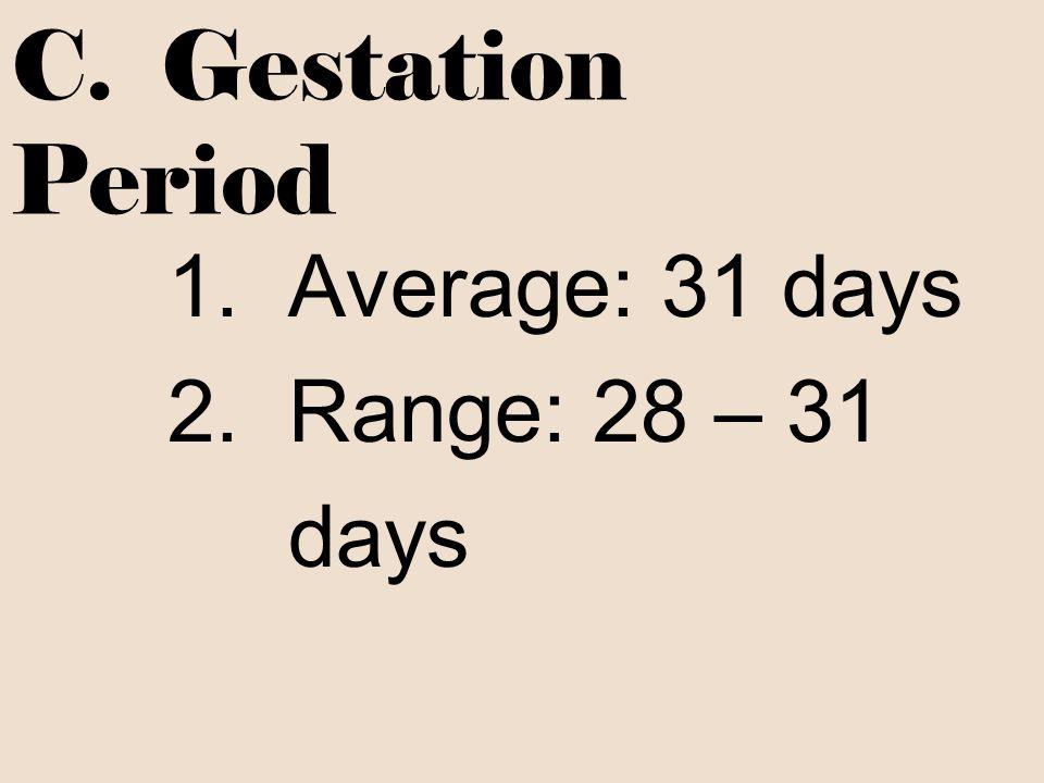C. Gestation Period 1. Average: 31 days 2. Range: 28 – 31 days