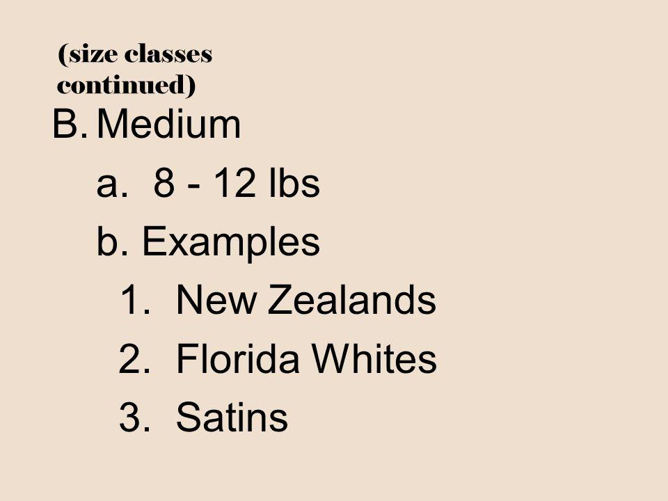 (size classes continued) B.Medium a. 8 - 12 lbs b. Examples 1. New Zealands 2. Florida Whites 3. Satins