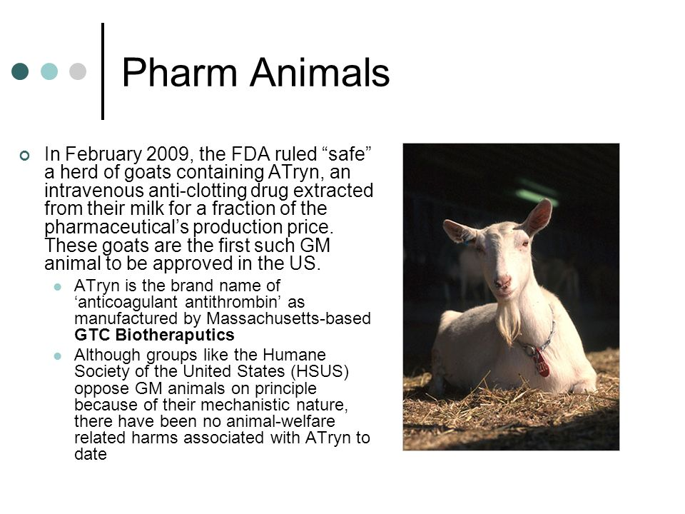 Pharm Animals In February 2009, the FDA ruled safe a herd of goats containing ATryn, an intravenous anti-clotting drug extracted from their milk for a