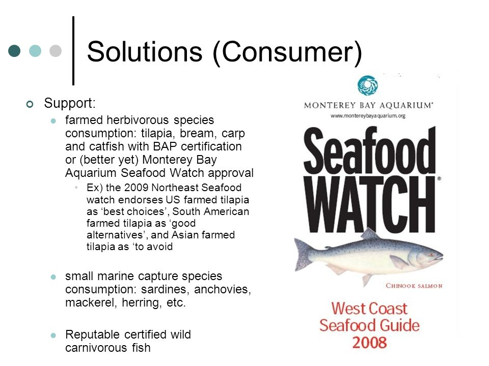 Solutions (Consumer) Support: farmed herbivorous species consumption: tilapia, bream, carp and catfish with BAP certification or (better yet) Monterey