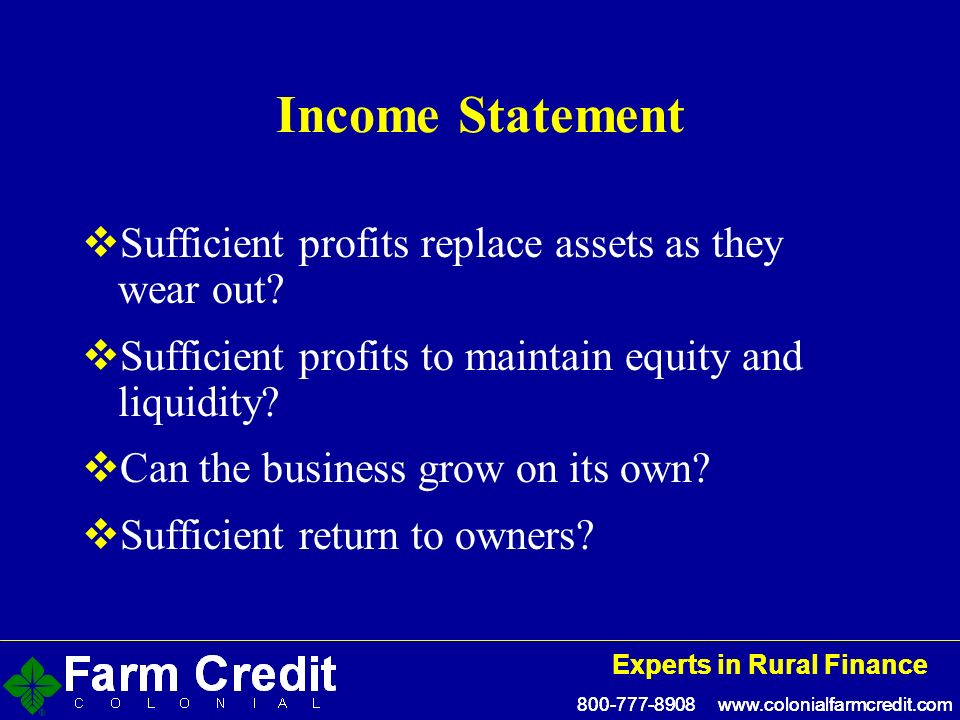 Experts in Rural Finance Experts in Rural Finance Income Statement Sufficient profits replace assets as they wear out.
