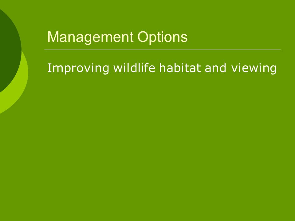 Management Options Improving wildlife habitat and viewing