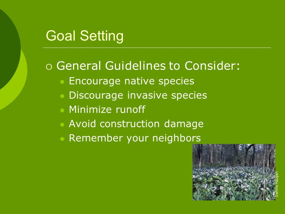 Goal Setting General Guidelines to Consider: Encourage native species Discourage invasive species Minimize runoff Avoid construction damage Remember y