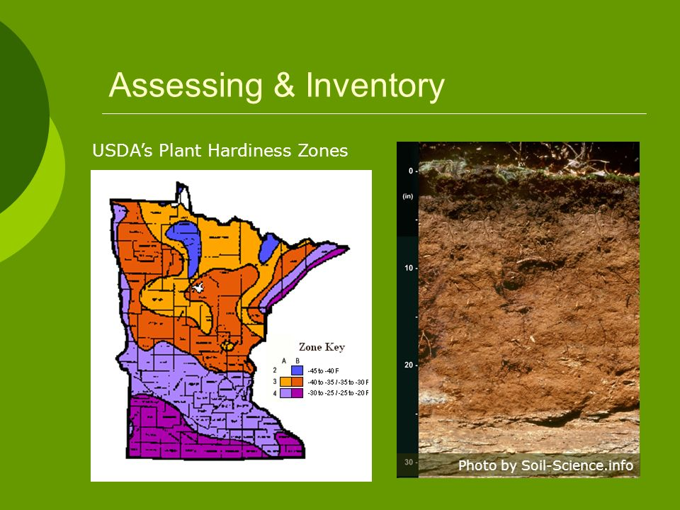 Assessing & Inventory Photo by Soil-Science.info USDAs Plant Hardiness Zones