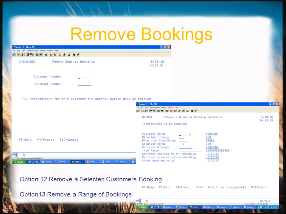 Remove Bookings Option 12 Remove a Selected Customers Booking Option13 Remove a Range of Bookings