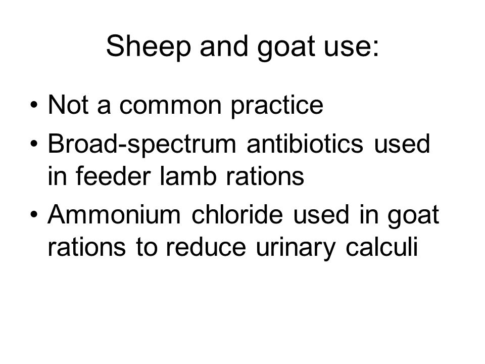 Sheep and goat use: Not a common practice Broad-spectrum antibiotics used in feeder lamb rations Ammonium chloride used in goat rations to reduce urin