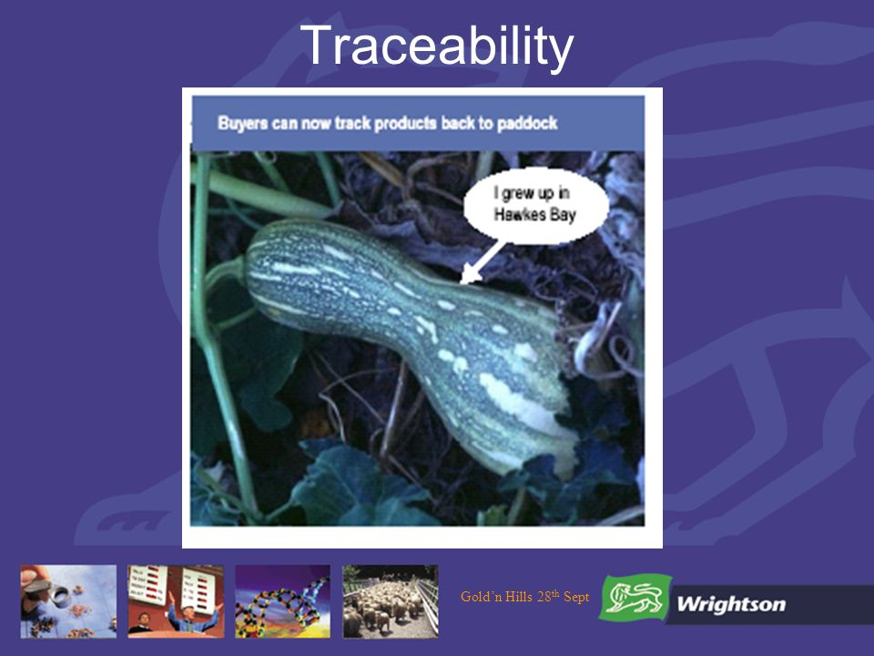 Goldn Hills 28 th Sept Traceability