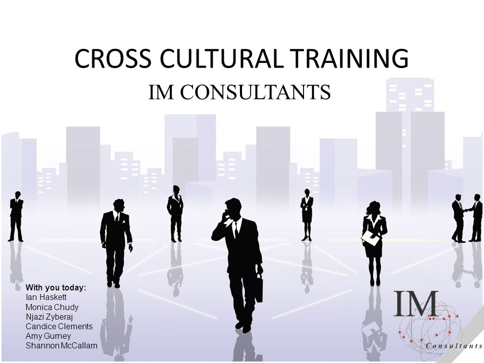IM Consultants Who we are.