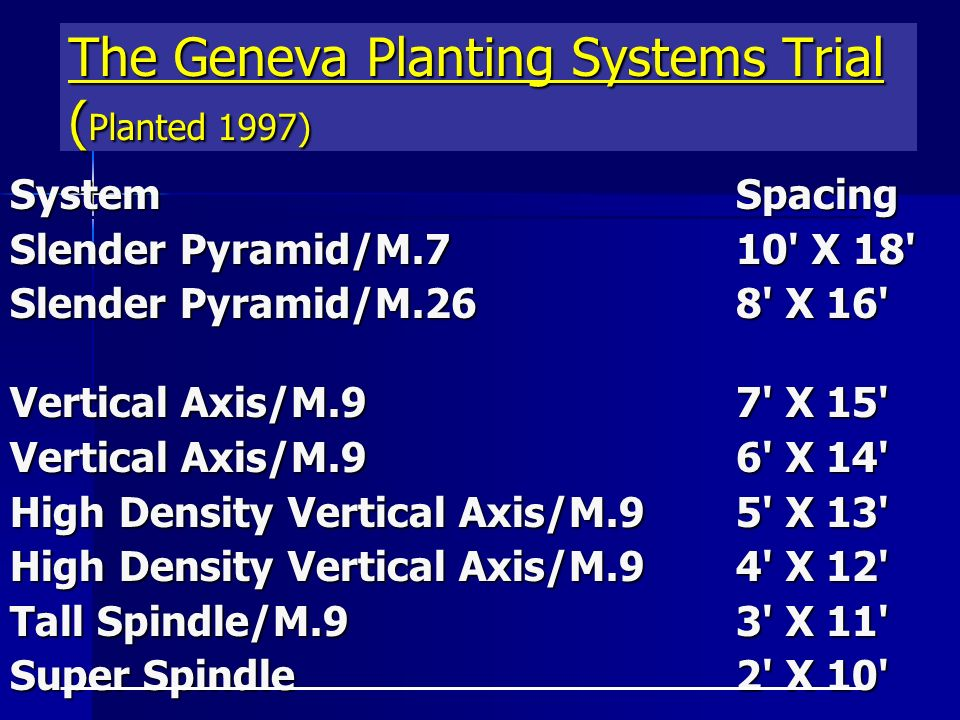 The Geneva Planting Systems Trial ( Planted 1997) SystemSpacing Slender Pyramid/M.710 X 18 Slender Pyramid/M.268 X 16 Vertical Axis/M.97 X 15 Vertical Axis/M.96 X 14 High Density Vertical Axis/M.9 5 X 13 High Density Vertical Axis/M.9 4 X 12 Tall Spindle/M.9 3 X 11 Super Spindle 2 X 10