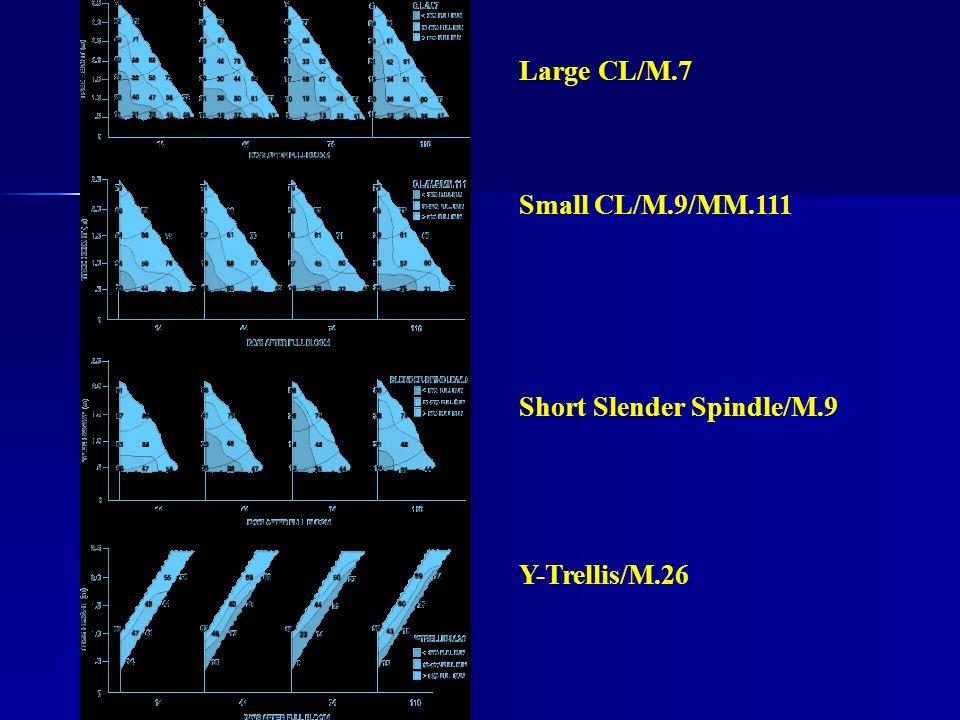 Large CL/M.7 Small CL/M.9/MM.111 Short Slender Spindle/M.9 Y-Trellis/M.26