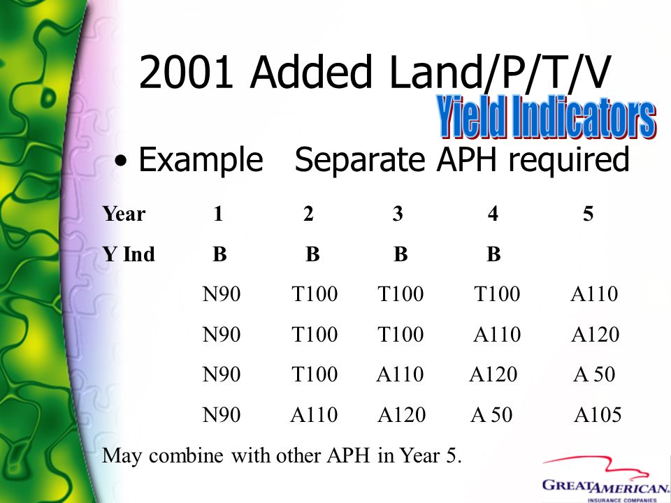 2001 Added Land/P/T/V Example Separate APH required Year 1 2 3 4 5 Y Ind B B B B N90 T100 T100 T100 A110 N90 T100 T100 A110 A120 N90 T100 A110 A120 A