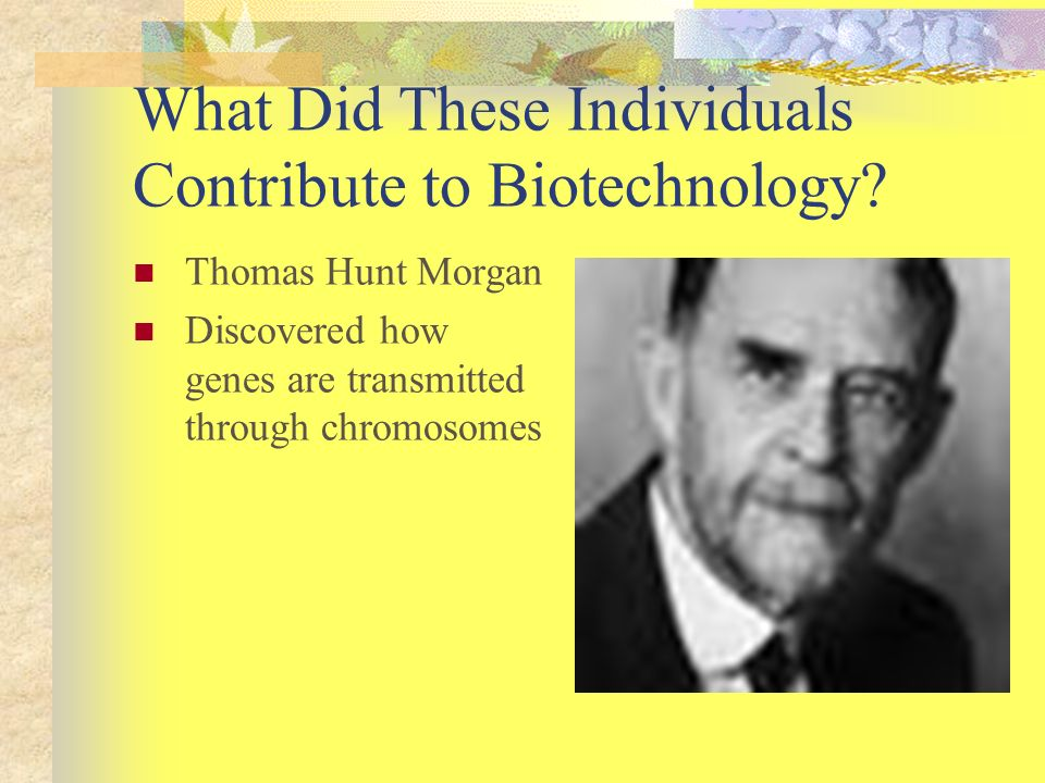 What Did These Individuals Contribute to Biotechnology? Thomas Hunt Morgan Discovered how genes are transmitted through chromosomes