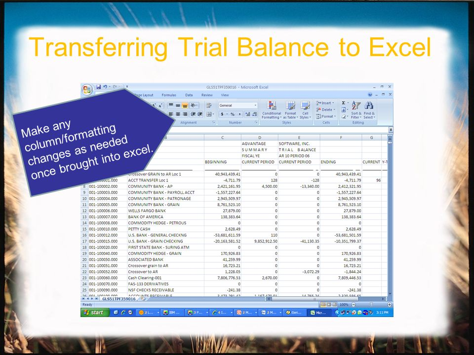 Make any column/formatting changes as needed once brought into excel. Transferring Trial Balance to Excel