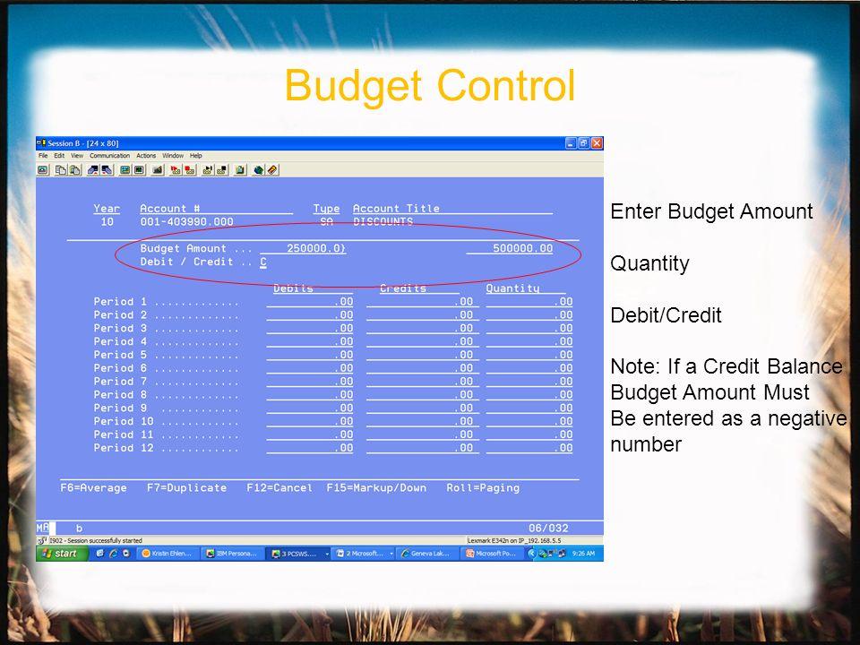 Enter Budget Amount Quantity Debit/Credit Note: If a Credit Balance Budget Amount Must Be entered as a negative number Budget Control