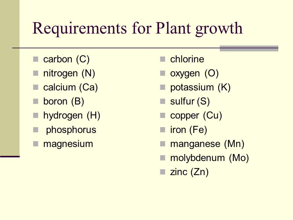 Monocot & Dicot plant