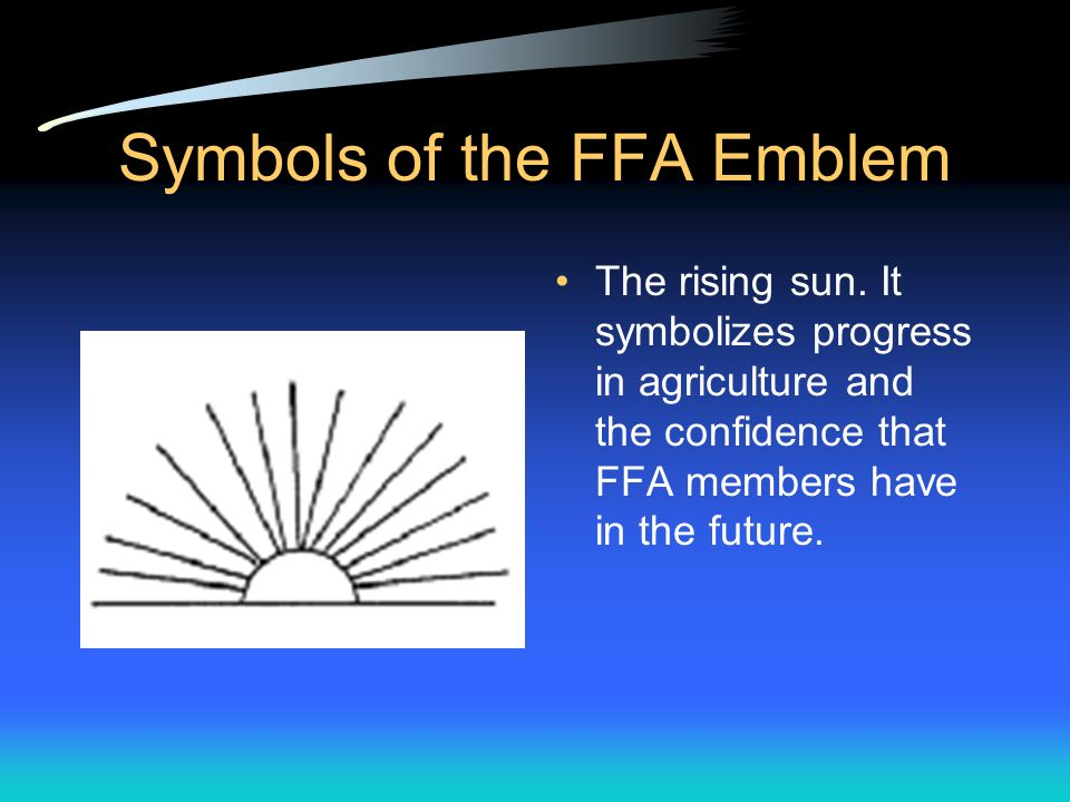 Symbols of the FFA Emblem A cross-section of an ear of corn. The symbol of corn represents our common agricultural interests, is native to America, an