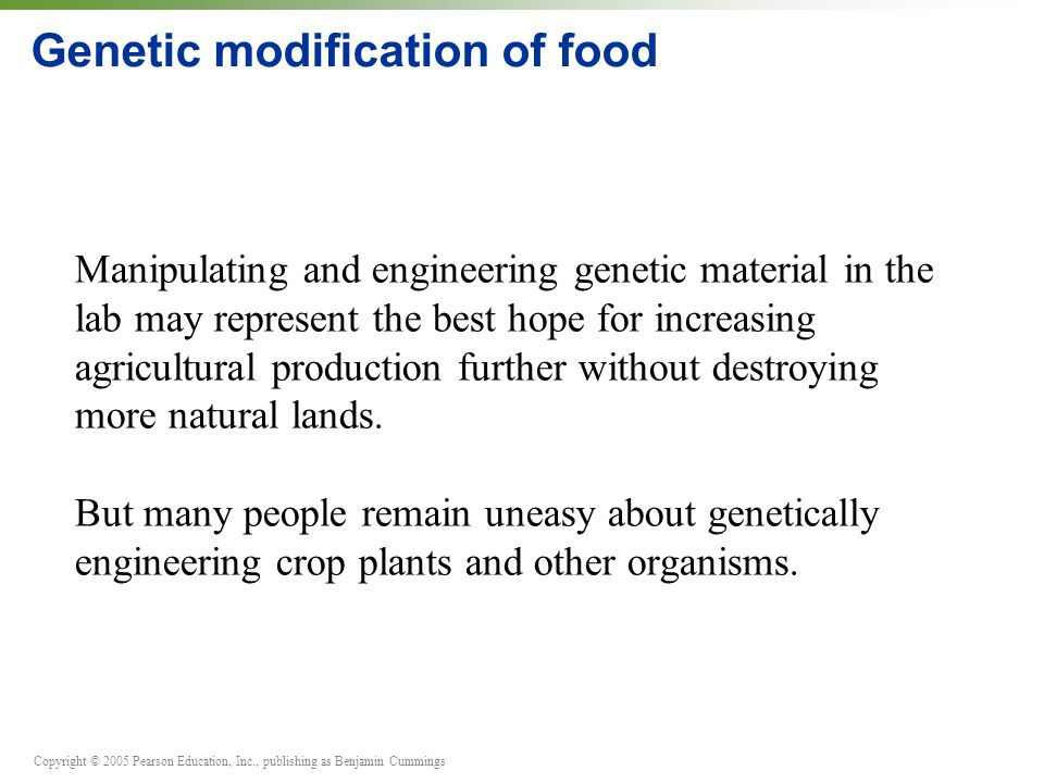 Copyright © 2005 Pearson Education, Inc., publishing as Benjamin Cummings Genetic modification of food Manipulating and engineering genetic material i