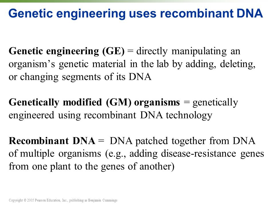Copyright © 2005 Pearson Education, Inc., publishing as Benjamin Cummings Genetic engineering uses recombinant DNA Genetic engineering (GE) = directly