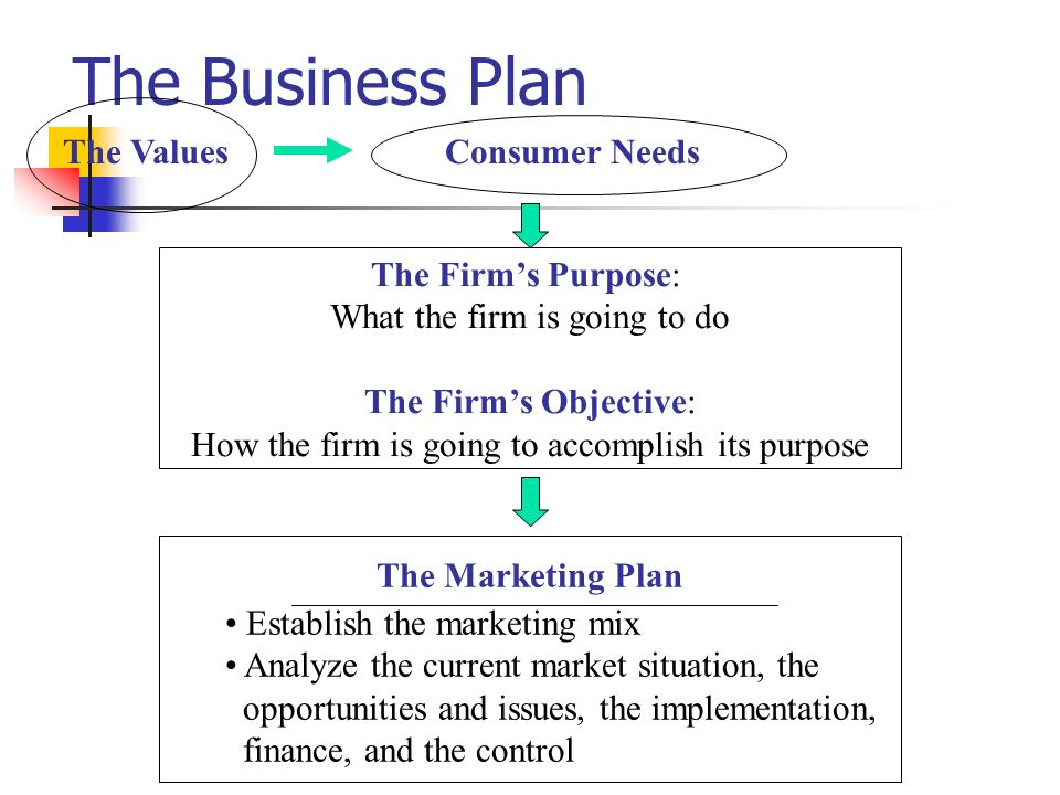The Business Plan Consumer Needs The Firms Purpose: What the firm is going to do The Firms Objective: How the firm is going to accomplish its purpose
