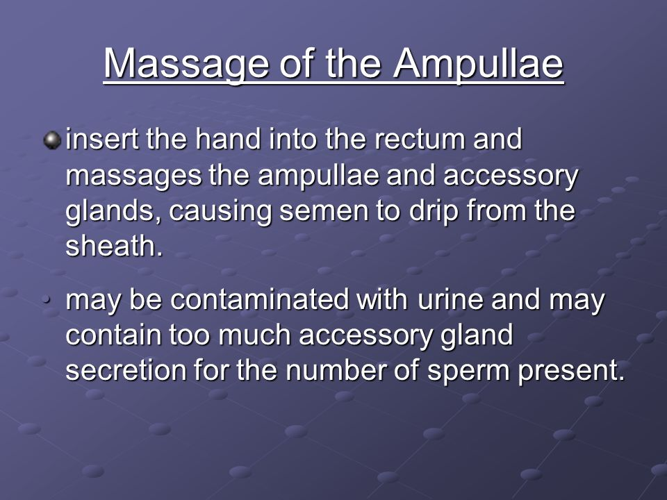 Massage of the Ampullae insert the hand into the rectum and massages the ampullae and accessory glands, causing semen to drip from the sheath. may be