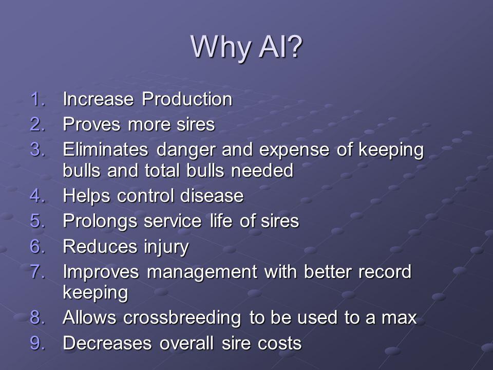 Why AI.