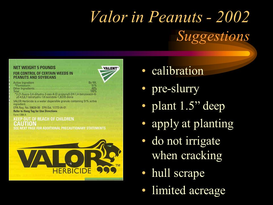 Valor in Peanuts - 2002 Suggestions calibration pre-slurry plant 1.5 deep apply at planting do not irrigate when cracking hull scrape limited acreage