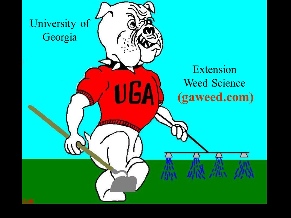 University of Georgia Extension Weed Science (gaweed.com)