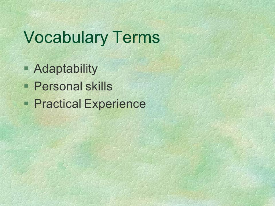 Vocabulary Terms §Adaptability §Personal skills §Practical Experience