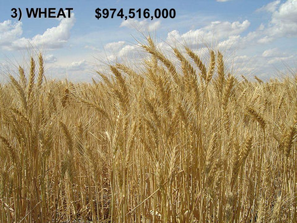 3) WHEAT $974,516,000