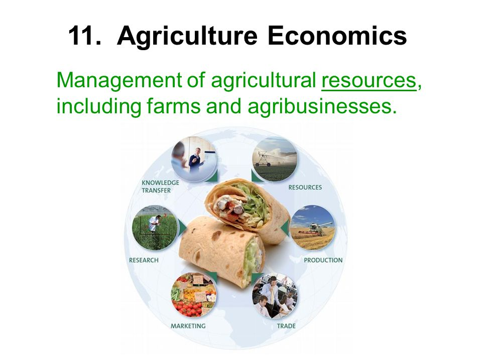 Management of agricultural resources, including farms and agribusinesses. 11. Agriculture Economics
